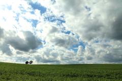 雲流るる丘