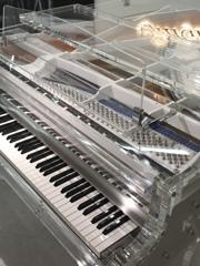 スケルトン ピアノ