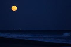 月が見てる