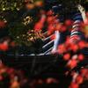 鐘楼に満る秋