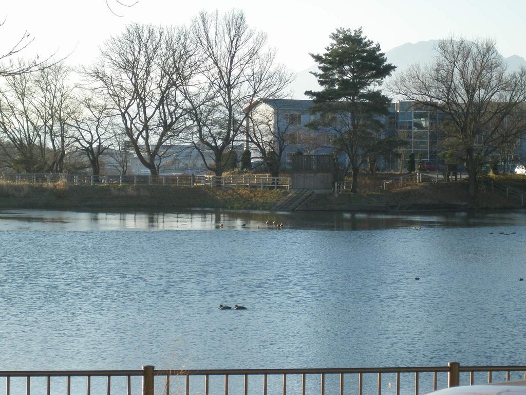 長坂町の冬