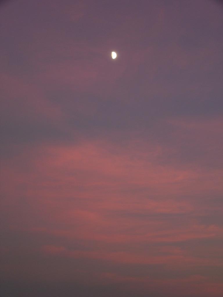 宵の口・月