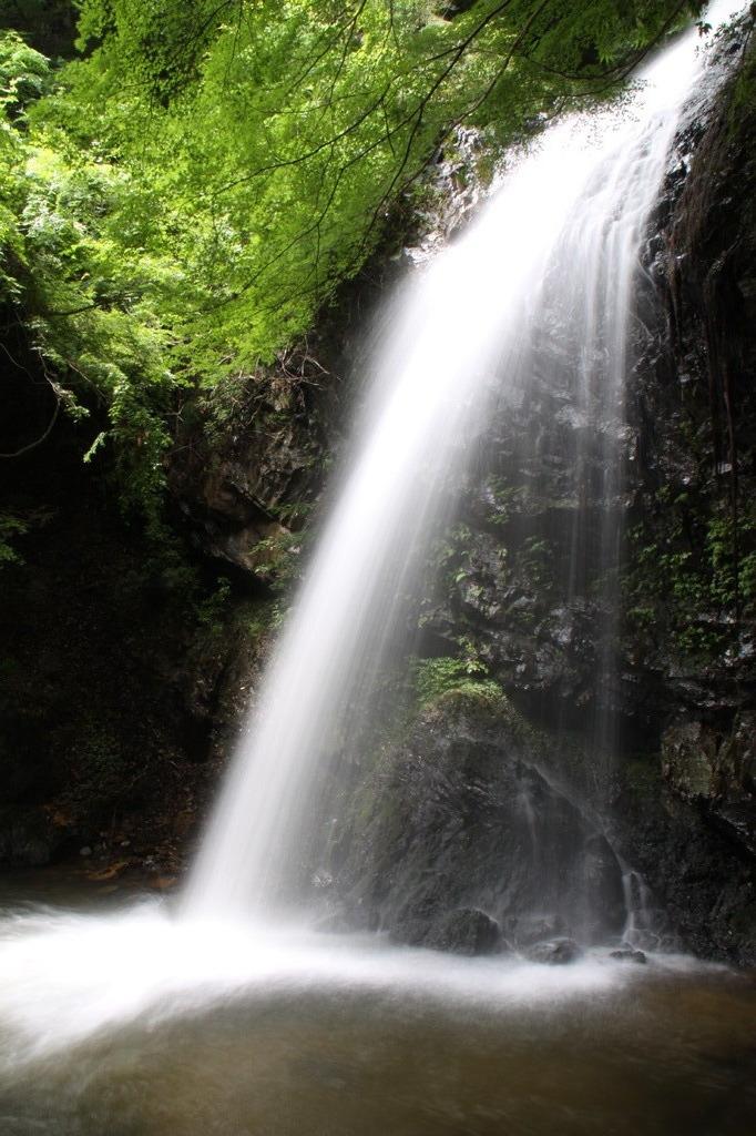 白藤の滝(三重) vol.1