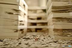 本日の Miniature LIFE展 NAGASAKI