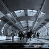 TOKYO MOVE : Rinkai Line Station