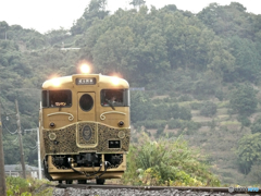 本日の:或る列車