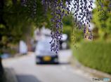 Koga Fujitana : Nagasaki Historic Road