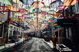 transmitted lights umbrella street, HTB