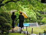 ノクチクロン:雨の景 III
