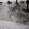 NIKON NIKON D300で撮影した風景(_DSC2313)の写真(画像)