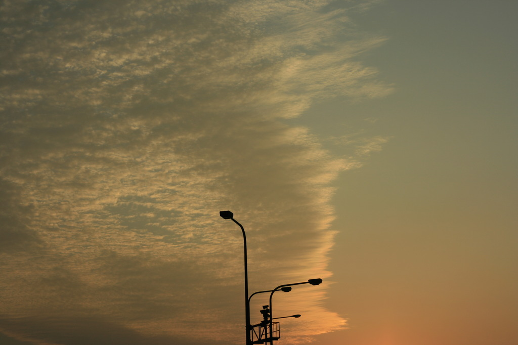 photo296897