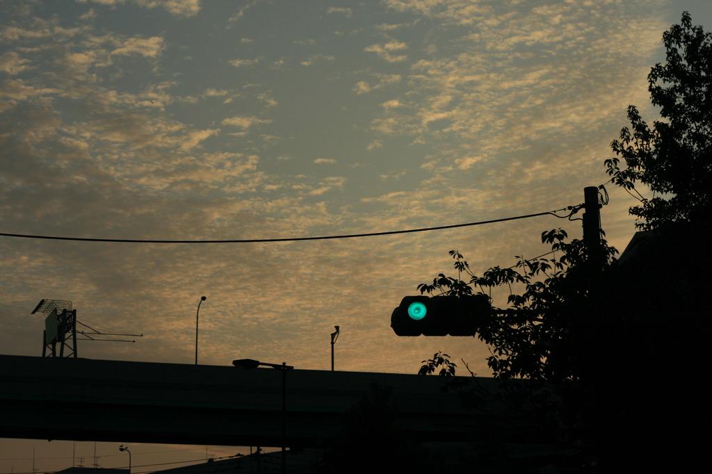 photo296899