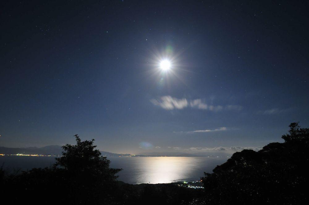 錦江湾の夜景