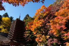 紅葉 談山神社 #002