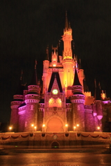 Celebrate! Tokyo Disneyland Ⅰ