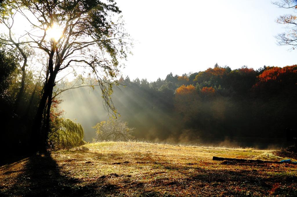 里山の目覚め