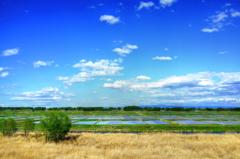 Refreshing scenery