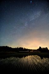 静かな水田の夜