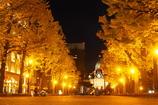 秋色 street