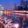 浪花夜桜の宴