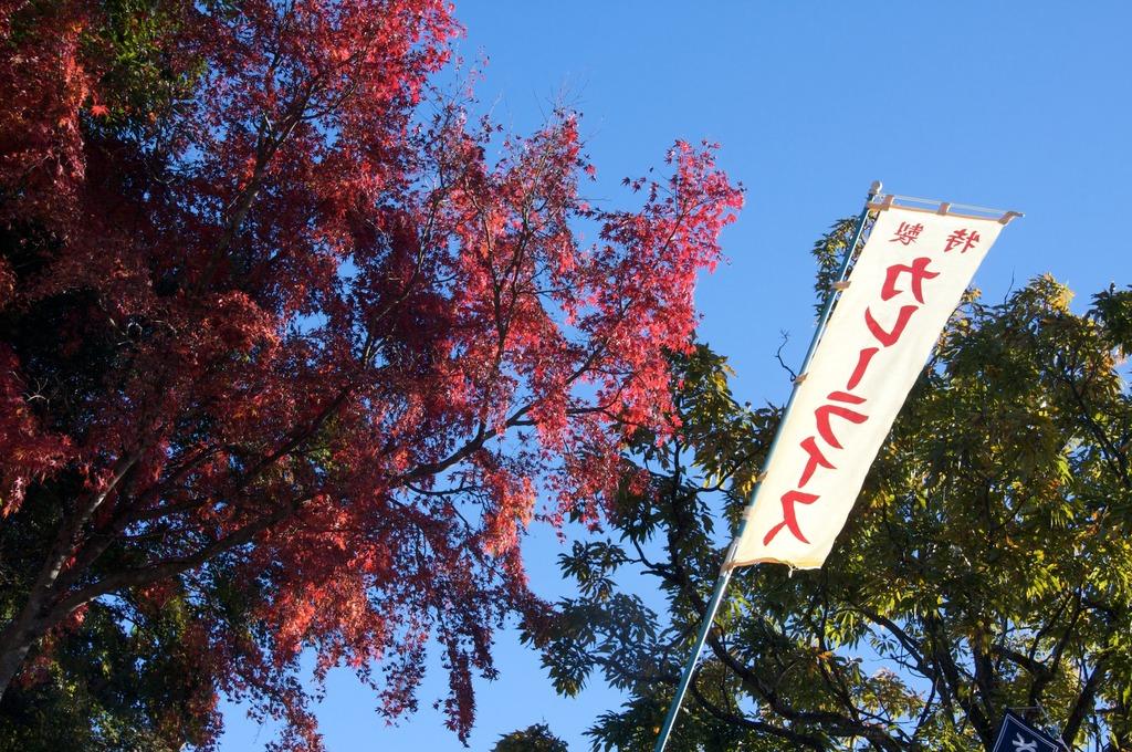 秋はやっぱり!!!