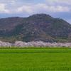 滋賀県八幡山