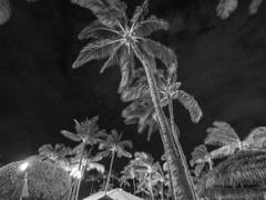 夜のマリオット