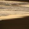 CANON Canon EOS 7Dで撮影した(海)の写真(画像)
