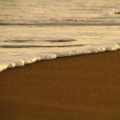 CANON Canon EOS 7Dで撮影した(キタコレ(゜゜))の写真(画像)