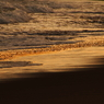 CANON Canon EOS 7Dで撮影した(夕日と波)の写真(画像)