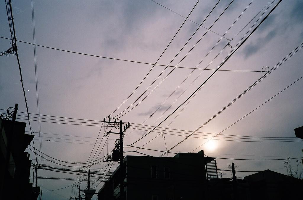 photo271132