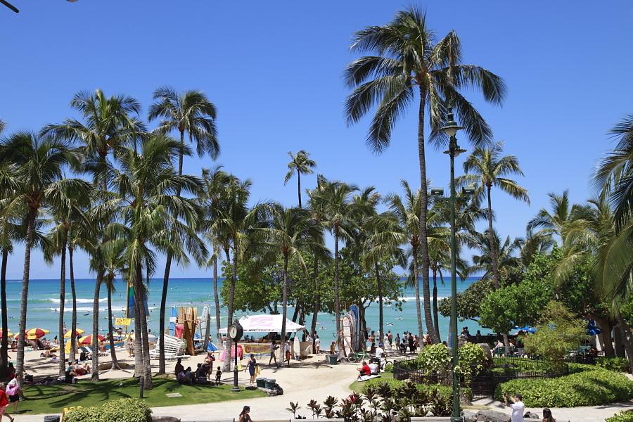 いかにもハワイ