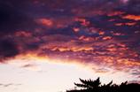 the look of the sky # 11 ~早朝の雲~