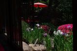 傘のある庭園