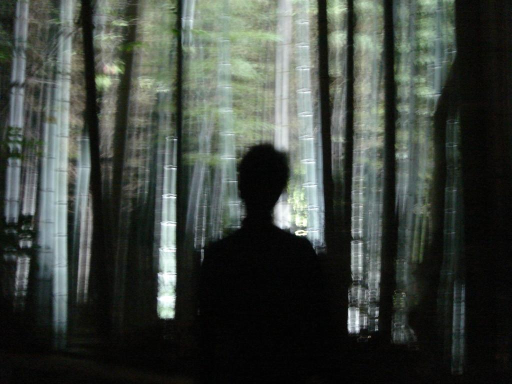 光と影 2