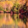湯ノ湖 鏡面紅葉