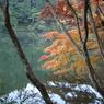 SONY DSLR-A100で撮影した風景(鎌北湖 ~静かな朝の紅葉~)の写真(画像)
