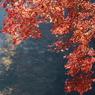 SONY DSLR-A100で撮影した風景(鎌北湖 ~赤いカーテン~)の写真(画像)