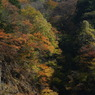 SONY DSLR-A100で撮影した風景(中津峡 ~光と影~)の写真(画像)