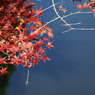 SONY DSLR-A100で撮影した風景(鎌北湖 ~水の上に~)の写真(画像)