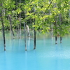 Refreshing light blue