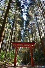 羽黒山神社の参道
