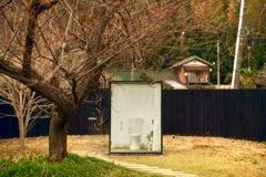 日本一広い女子トイレ
