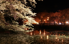 夜の三島大社