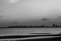 三番瀬の夕陽12
