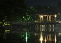 NIKON NIKON D90で撮影した(奈良の浮見堂)の写真(画像)