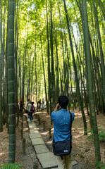 佇むは竹とカメラと