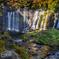 白糸の滝0024