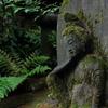 森の古仏0034