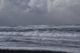 超強風の中